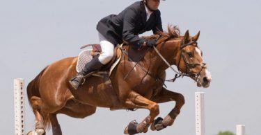 Esportes com cavalo