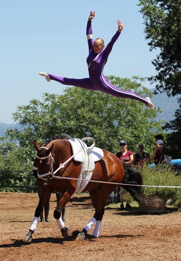 Conhe 231 A 4 Esportes Com Cavalo E Suas Origens Qcanimais